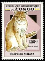 W.A.S. Calalog : Wild Cats  - 2007 - Democratic Republic of Congo -  Animaux