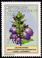 W.A.S. Calalog : Orchids 2012 - 2012 - Democratic Republic of Congo -  Faunes & Flores