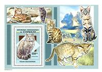 WAS Calalog - Wild Cats  - 1 - 2007