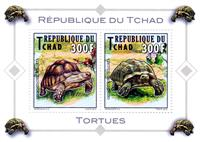 W.A.S. Calalog : Tortles - 2012 - Chad -  Animaux, Faunes & Flores