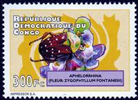 W.A.S. Calalog : Beetles and Flowers 2012 - 2012 - République Démocratique du Congo -  Faunes & Flores