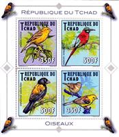 W.A.S. Calalog : Indigenous Birds 2012 - 2012 - Chad -