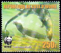 W.A.S. Calalog : Worldwide Conservation 2005  (Otters) - 2005 - Ivory Cost -  Faunes & Flores, WWF - Fonds Mondial