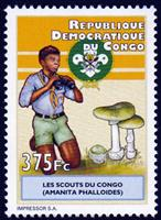 W.A.S. Calalog : scout and natural science 2012 - 2012 - Democratic Republic of Congo -  Scoutisme, Faunes & Flores