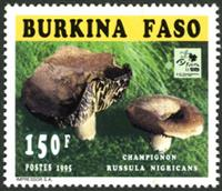 W.A.S. Calalog : Mushrooms 18th Jamborée Hollande - 1996 - Burkina Faso -  Faunes & Flores