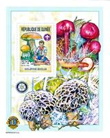 WAS Calalog - Boy Scout and Mushrooms 2002 - 1 - 2002